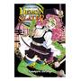 Manga: Demon Slayer: Kimetsu No Yaiba Vol.14 Panini