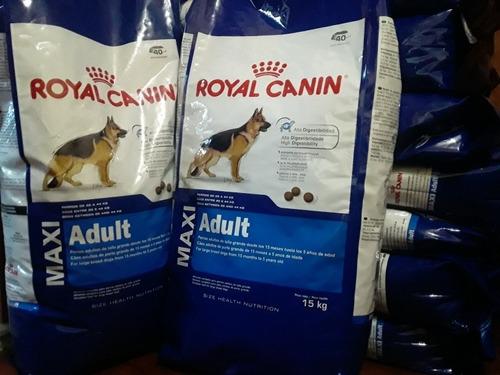 Royal Canin Adulto Kg 15