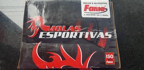 Molas Esportivas Passat Tsi 2010 A 2014 Diant. E Tras.