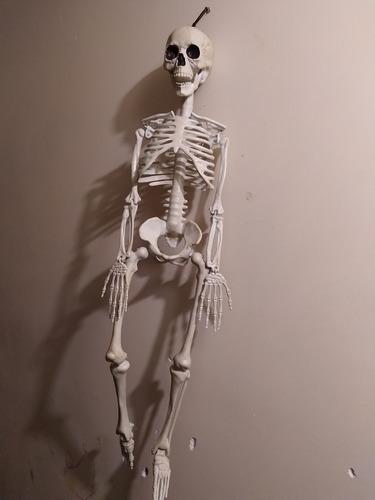 Halloween Esqueleto Humano 80cm Decoracion Calavera