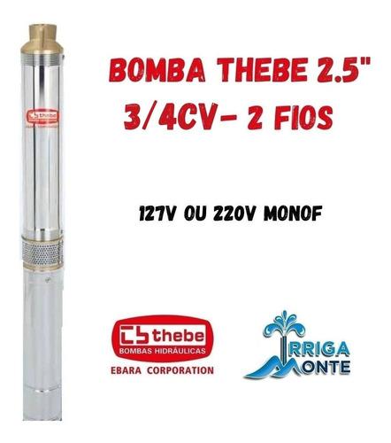 Bomba Submersa Caneta Palito Thebe/ebara 2.5bps2/22 - 3/4cv