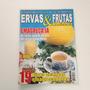 Revista Ervas E Frutas Medicinais Emagreça Já N°1 Cc784