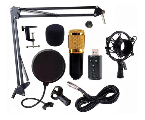 Micrófono Audiotek Bm800 Condensador Omnidireccional Negro