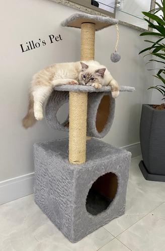 Arranhador Gato Elegance Grande Promoção