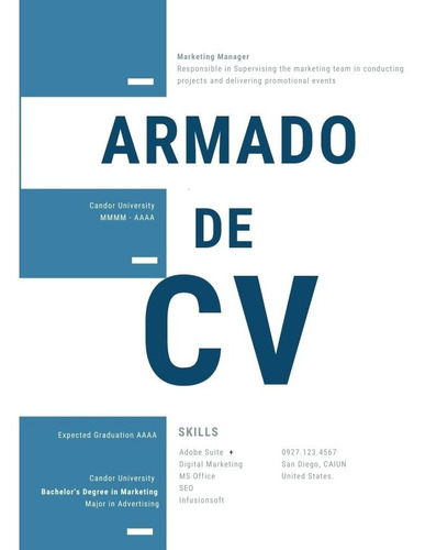 Armado Cv | Curriculum Vitae Personalizado En 24 Horas