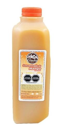 Pulpa De Fruta Natural Mango