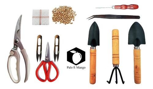 Kit Bonsai Tradicional 10 Piezas + Abono 50gr + 10 Semillas