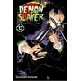 Demon Slayer Kimetsu No Yaiba 13 Koyoharu Goto