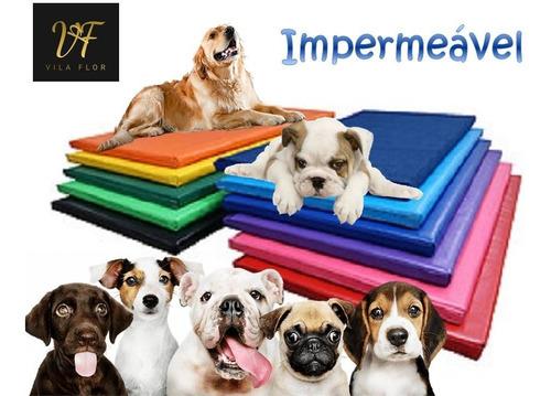 Caminha Petlife Cães 70x50cm Impermeável Colchonete Pet