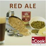 Kit Insumos (receita) P/ 10l Cerveja Artesanal Irish Red Ale