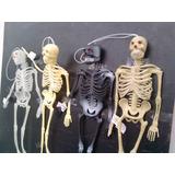 Esqueleto Goma Halloween 206 Huesos Bones Medicina Calaver