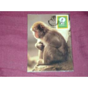 1 Post Card De Macau , Selado .