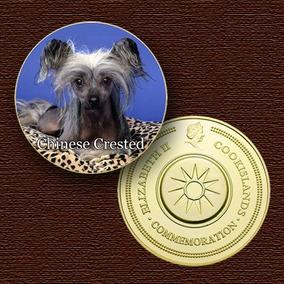 Cão Da Raça (chinese Crested) - 10783 - Medalha-frete Grátis
