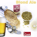Kit Insumos (receita) Cerveja Artesanal Blond Ale 20l / 40l