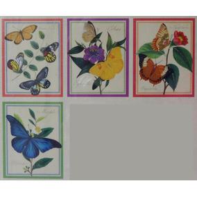 4 Cartão C/ Envelope Borboletas Asiática Asian Butterfly Eua