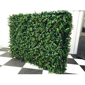 Muros Verdes Mamparas Divisorias Restaurante Envio Gratis