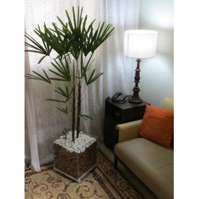 Palmeira Ráfia No Cachepot De Vidro 35x35x35 (natural)