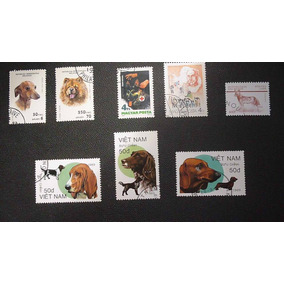 Temática - Felinos . 12 Selos - L- 623
