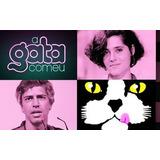 Novela A Gata Comeu - 20 Dvds - Frete Grátis