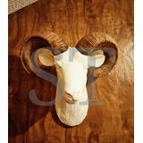 Cabeza Decorativa Animal
