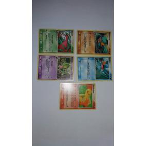 Cartas Pokemon Tcg - Iniciais De Hoenn Promo Pop Series