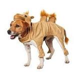 Disfraz Perro Petco Camello Original Importado Halloween 8486b02fed1