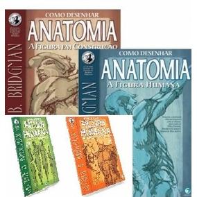 4 X Livros George Bridgman Desenhar Anatomia *col.completa*