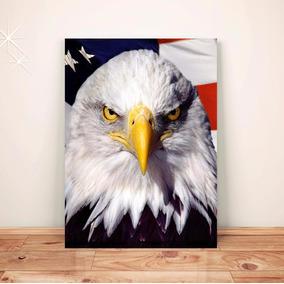 Pôster Águia América Eua - Placa Rígida A3 #pdv150a0
