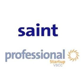 Saint Professional 5 Software Administrativo Legal