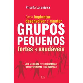 Livro Grupos Pequenos Fortes E Saudáveis: Como Implantar