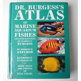 Dr. Burgess