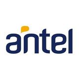 Chip Antel (ancel)