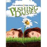 Pushing Daisies: Um Toque De Vida / Série Completa