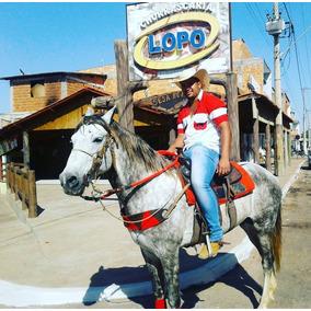 Cavalo Mm Manga Larga Marchador, Marcha Picada 38999368389
