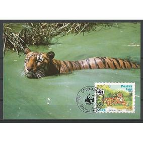Dams Laos Tigre Felino Wwf Máximo Postal Cartão Fauna