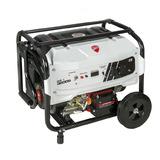 Generador Electrico Ducati Dgr3200s 4 T 3200w 110v/220v