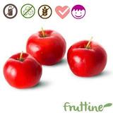Polpa De Acerola Congelada Fruttine (1kg)