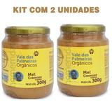 Kit 2 Mel Cremoso Orgânico Fazenda Vale Das Palmeiras - 300g