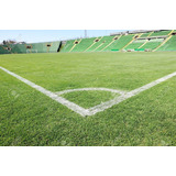 500 Gr Semilla De Pasto Terreno Seco Campo Futbol Resistente