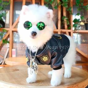 Óculos De Sol Pet - Cães Pequenos E Gatos - Roupa Pet dcc3e8713e