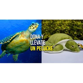 Peluche Tortuga Marina Wwf Conservación Donación Mínima
