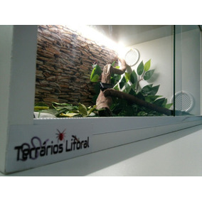 Terrario Para Repteis 60x30x30 Completo