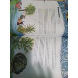 Publicaciones Para Recortes Y Empaquetado Varios Nekokun
