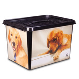 12 Caixa Pet Com Alça