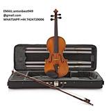 Nuevo Archin 44v-800 Professional Violin