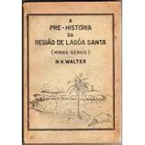 A Pré-história Da Região De Lagoa Santa (minas Gerais)
