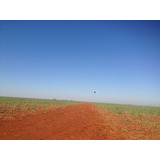 Venda Fazenda De Cana Morro Agudo Brasil - 6001