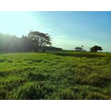 Vendo Sítio A 7 Km De Distancia Da Cidade (área Urbana)troca Por Casa - 552 - 32470619