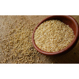 Quinoa Super Oferta!!! A Pasitos De Tres Cruces