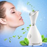 Vaporizador Nano Iónico Facial Cara Pulverizador Belleza